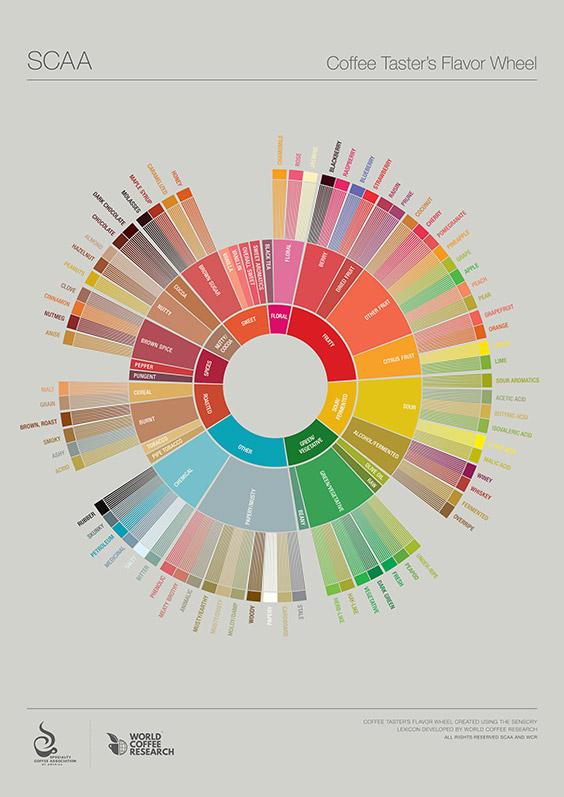 flavor-wheel2
