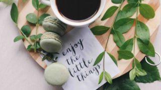 コーヒーの木LOVERよ!花はいつか咲く!